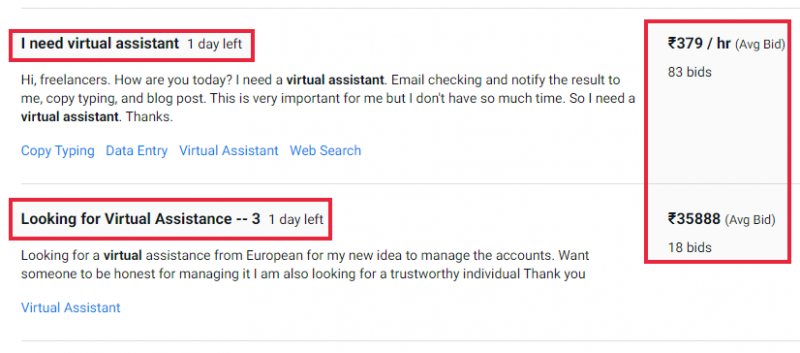 Virtual Assistant (VA) Job example